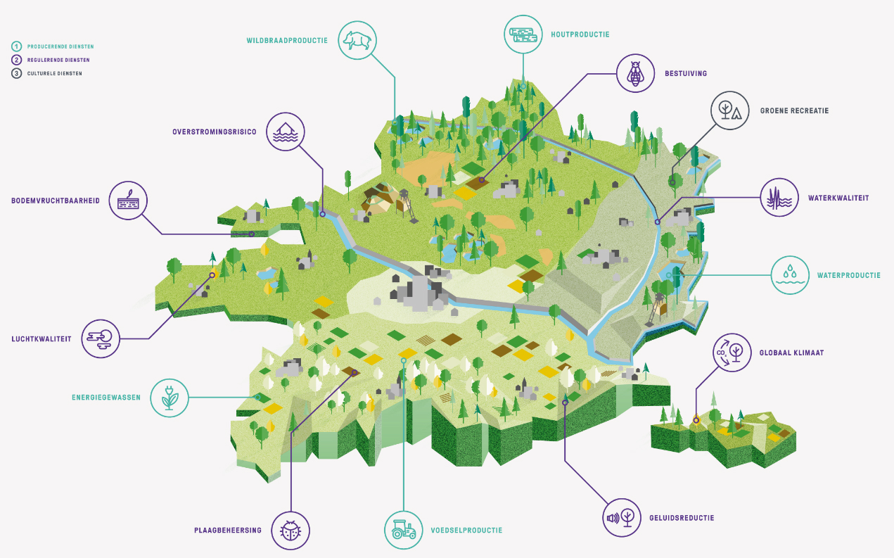 Geïntegreerde ecosystemen